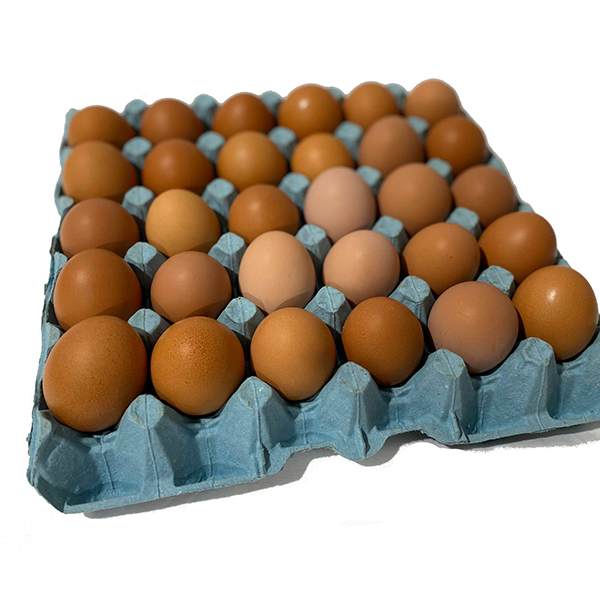 30 Free Range Eggs Tray