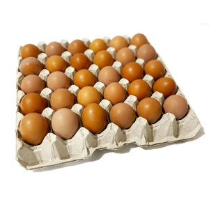 30 Caged Eggs Tray